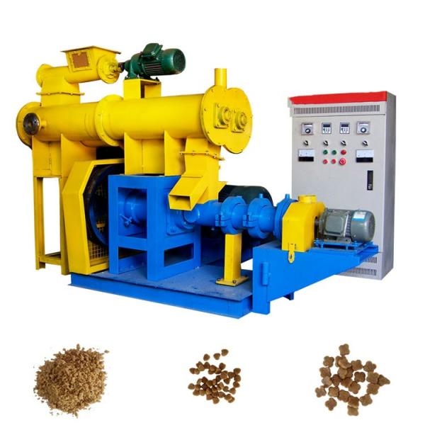 Supply Different Sizes Floating Pelleted Fish Feed Making Machine