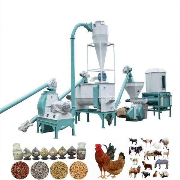 Agricultural Ce ISO Approved Automatic Animal Feed Pellet Machine for Sale