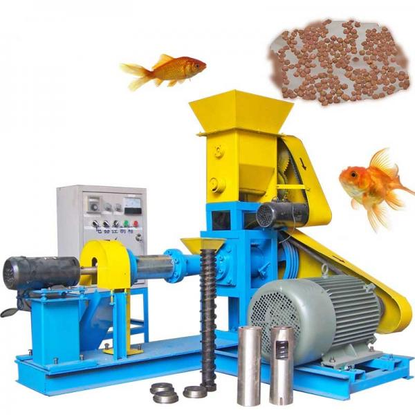 Dry and Wet Puffed Floating Fish Feed Pellet Feed Machine Mill Twin Screw Feed Pelleting Machine Pelleter Extruder Machinery